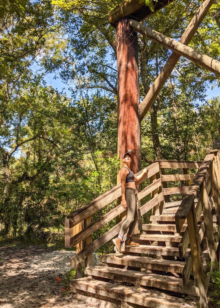 Hillsborough River State Park suspension bridge