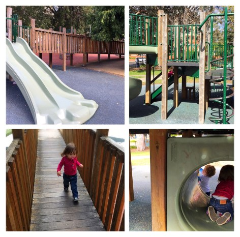 Willow Park Playground Hornsby