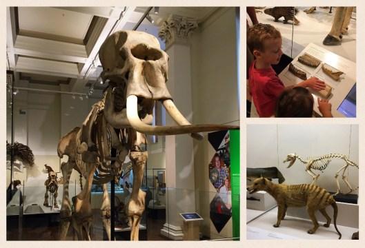 sydney museums