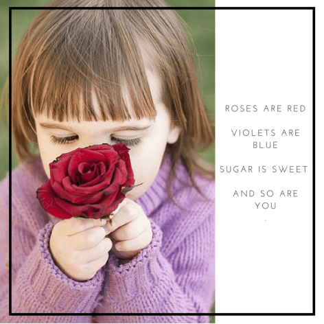 Roses and Red and Violets are Blue for kids