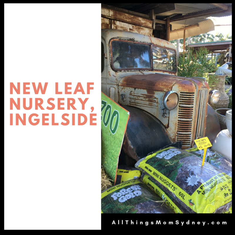 New Leaf Nursery Ingelside