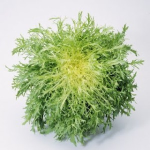 INSALATA DI FRISÉE ( Composite Salad made with frisée)