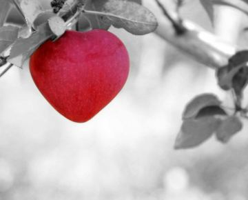 Short stories about Love and Kindness- The most beautiful heart