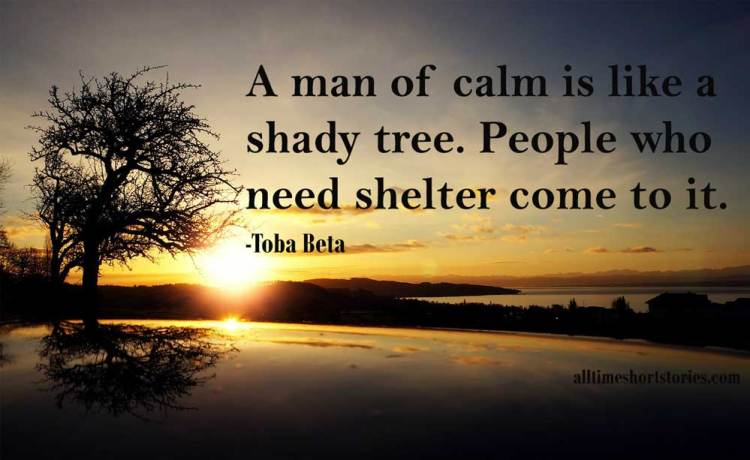Quote about Calmness