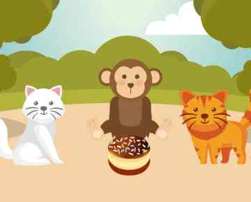 Children Moral Stories-Two cats and a Monkey