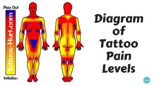 Diagram of tattoo pain hotspots [chart]  Alltop Viral