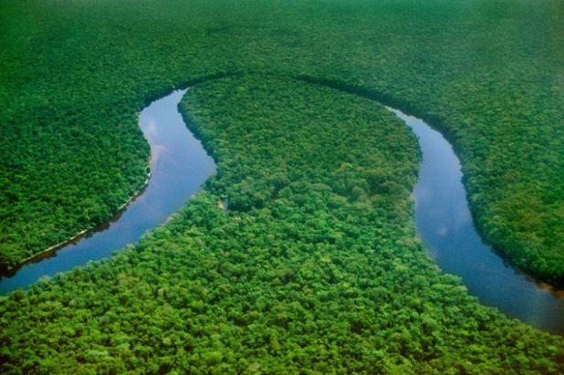 The Congo Basin