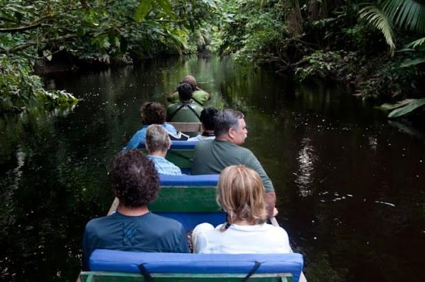 The Ecuadorean Amazon