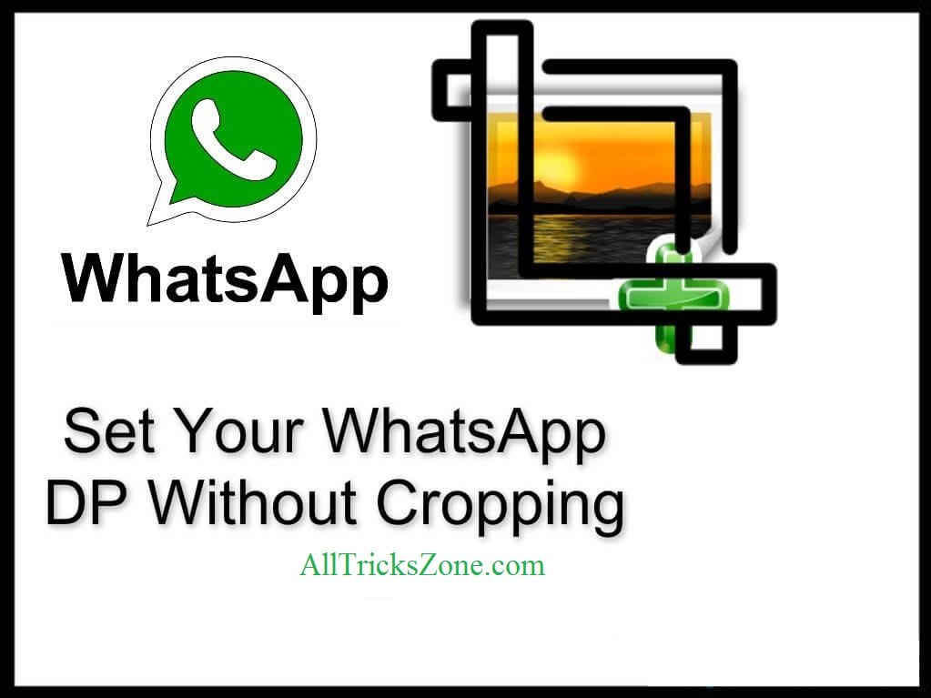 set whatsapp profile-picture-without-crop
