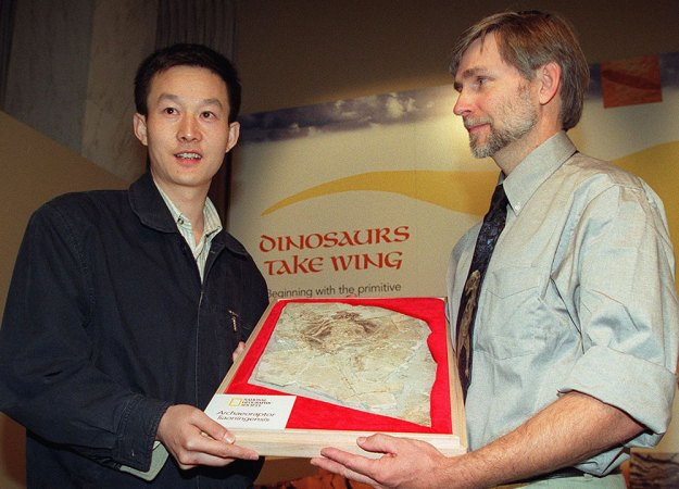 Xu Xing and Stephen Czerkas 1999