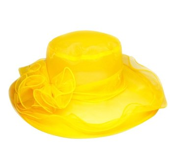 hats 6--Organza hat