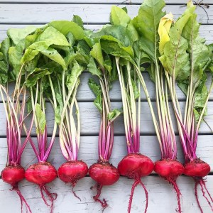 Beetroot for healthy skin