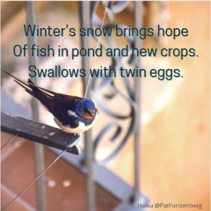 Hope, a Christmas Haiku just right for yuletide, Noel, Christmastime, Crăciun!