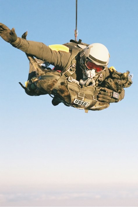 Highest man-dog parachute jump. Mike Forsythe and Cara. Photo source: K9 Storm Inc Handout Reuters