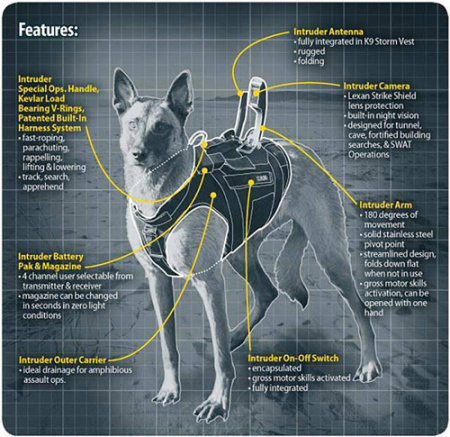 MWD K9 gear - best body Armor available for military dogs. Source K9 Storm