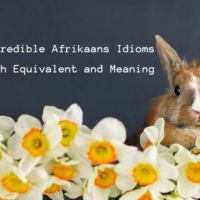 40 + Incredible Afrikaans Idioms with English Equivalents and Meaning