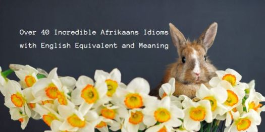Afrikaans Idioms with English Equivalent and Meaning