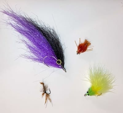 Fly sizes in a bunch.