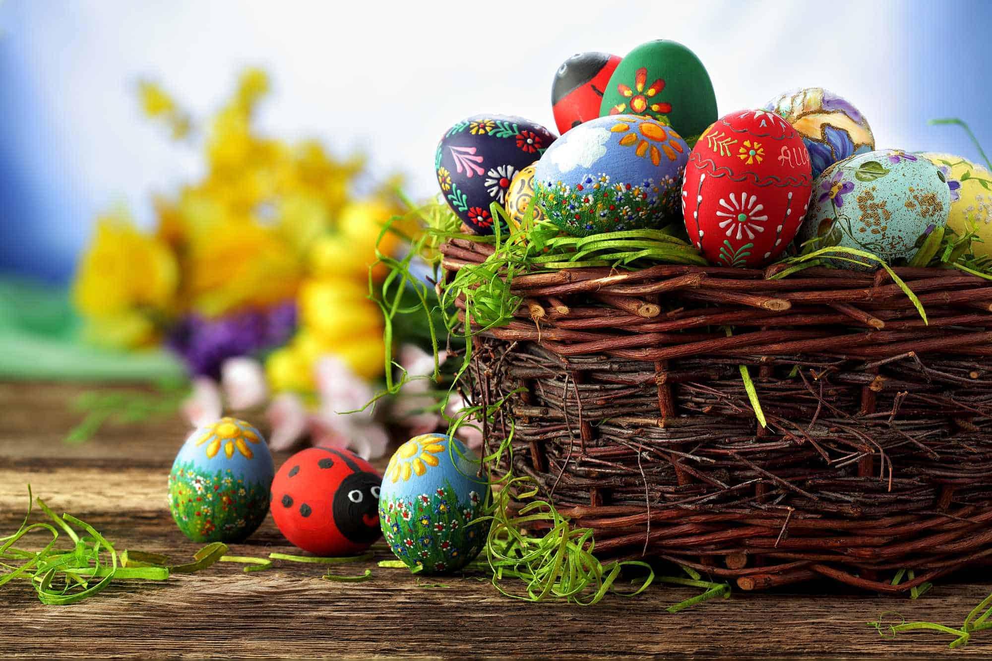 Easter Egg Hunt Invitation Wording Allwording