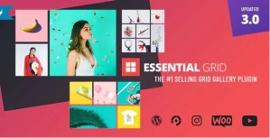 Read more about the article Essential Grid 3.0.12 – Gallery WordPress Plugin