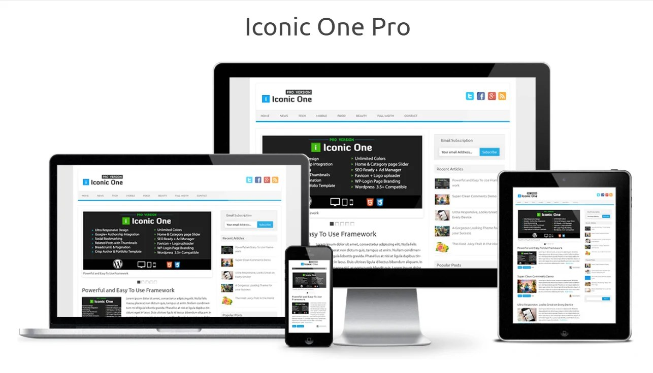 You are currently viewing Iconic One Pro 2.9.9.6 – Powerful WordPress Theme