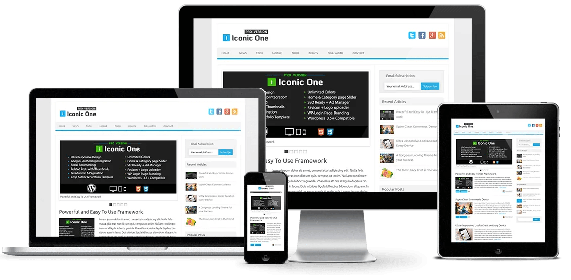 You are currently viewing Iconic One Pro 2.9.9.6 – Productive WordPress Theme