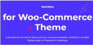 Read more about the article NextWoo Pro 3.0.0 NULLED – Woocommerce Elementor Builder