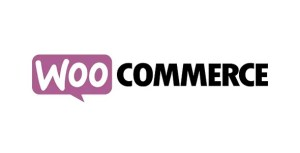 Read more about the article WooCommerce Product Vendors 2.1.48
