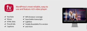 Read more about the article FV Player Pro 7.4.45.727 – WordPress Video Player Plugin