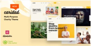 Read more about the article Caridad 2.1 NULLED – Charity WordPress Theme