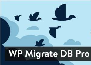 Read more about the article WP Migrate DB PRO 2.0.2 (+ Addons) – Plugin For WordPress Database Migration