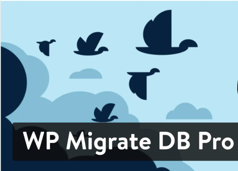 You are currently viewing WP Migrate DB PRO 2.0.2 (+ Addons) – Plugin For WordPress Database Migration