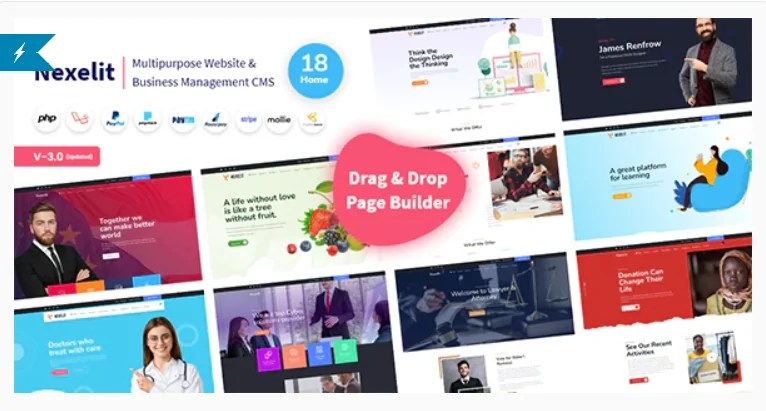 Read more about the article Nexelit 3.0.1 Nulled – Multipurpose Website & Business Management System CMS