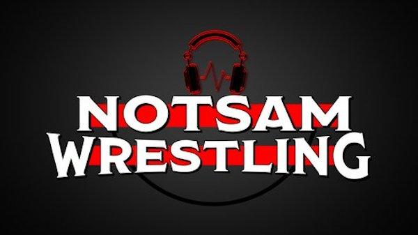 Watch Wrestling WWE NotSam Wrestling E14: Celebrating and Rethinking The Rumble