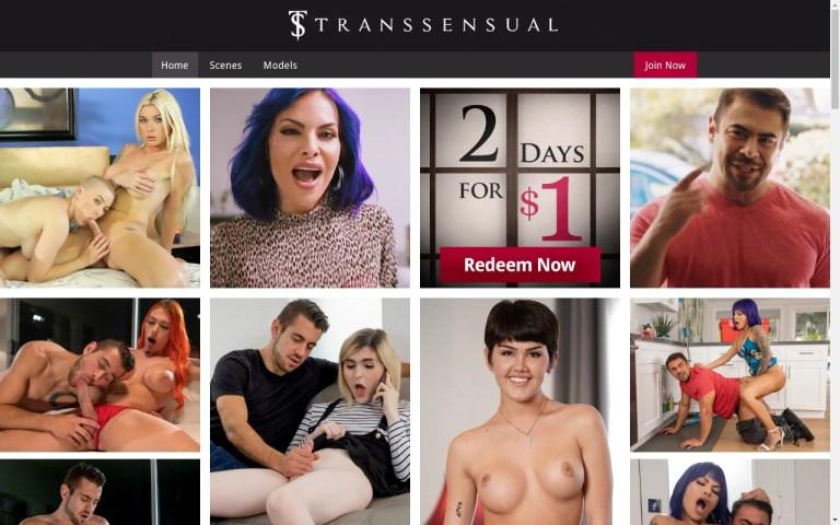 Transsensual - Premium Shemale Porn Sites