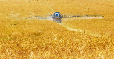 Shocking levels of pesticides in US produce