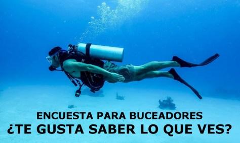 Discover_Scuba_Diving_--_St._Croix,_US_Virgin_Islands