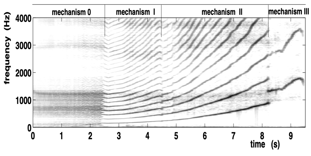 Glissando showing the different mechanisms of the voice