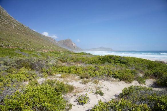 Witsands-Soetwater Coastal Conservancy  (c) Allyson Scott