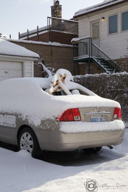 Damaged car after snowfall