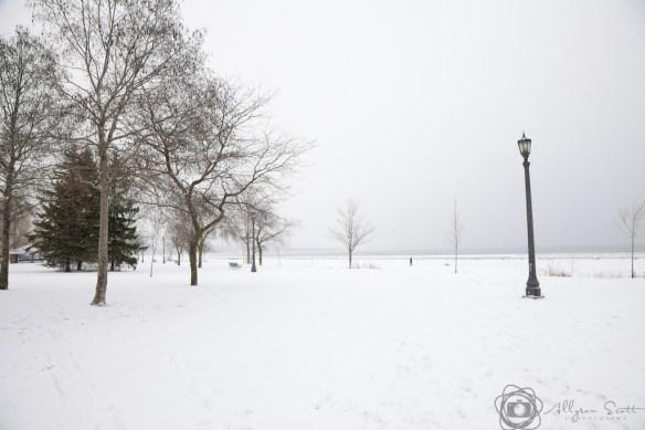 Woman walking dog at Sir Casimir Gzowski Park in winter, Toronto