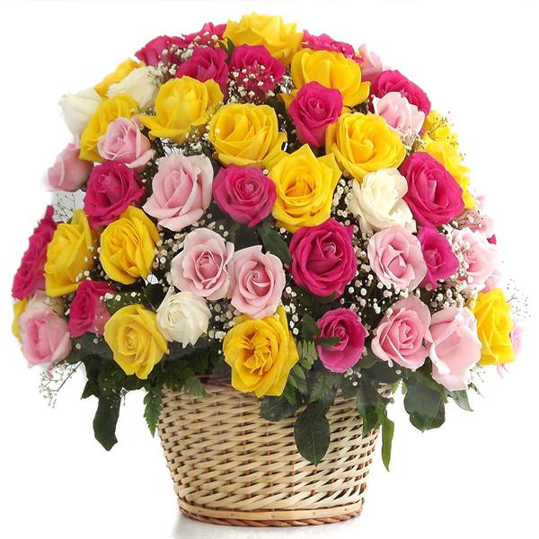 Rosas con amor. Floristería ALMA FLORAL Bogotá
