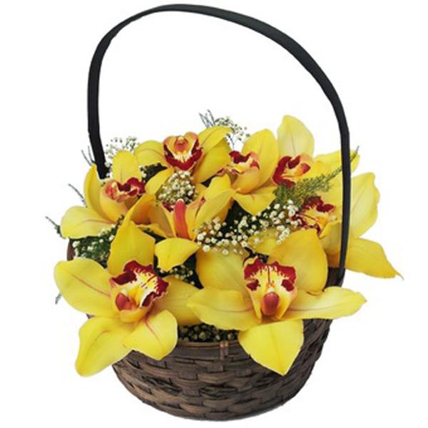 Cesta de orquídeas