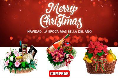 Navidad 2020. Anchetas y regalos. Floristería ALMA FLORAL Bogotá
