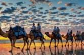 ارتفاع عدد السياح الوافدين على المغرب بنسبة 9 في المائة عند متم أكتوبر 2017