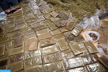 حجز 110 كيلوغراما من مخدر الحشيش مخبأة داخل مقطورة شاحنة بميناء طنجة