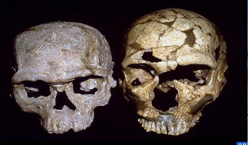 اكتشاف أقدم إنسان يعطي للمغرب مكانة متميزة في دراسة هذه الحقبة