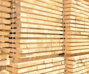 بنوك محلية تدرس تدبير 2.4 مليار جنيه لتدشين أول شركة لتصنيع الأخشاب من قش الأرز