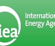 «الوكالة الدولية للطاقة» تتوقع زيادة 50% فى الطاقة المتجددة المنتجة بالعالم