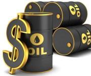 أوبك: سعر النفط يهبط لأقل من 17 دولارا للبرميل